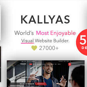 JUAL KALLYAS - Creative eCommerce Multi-Purpose WordPress Theme
