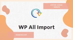 WP All Import Pro + Lifetime 1 Website ORIGINAL LICENSE